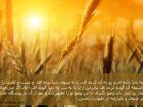 تطهیر جان و تن