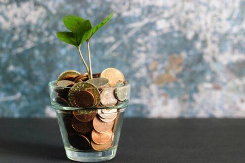 راهکار موثر برای تقویت هوش مالی