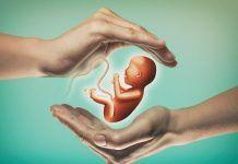 هفته 25 بارداری