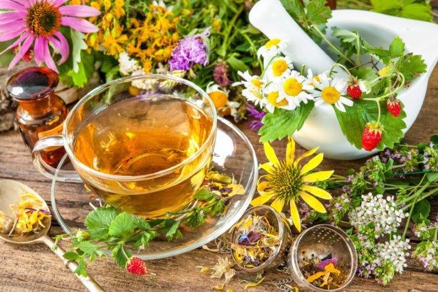 شناخت گیاهان دارویی و شرایط استفاده صحیح از آن ها