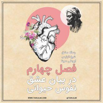 رساله عشق ابو علی سینا فصل چهارم - رساله عشق ابن سینا - در بیان عشق نفوس حیوانی