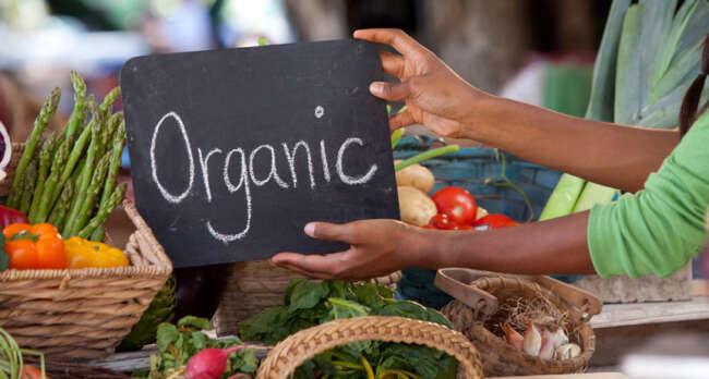 محصولات ارگانیک / مواد غذایی ارگانیک