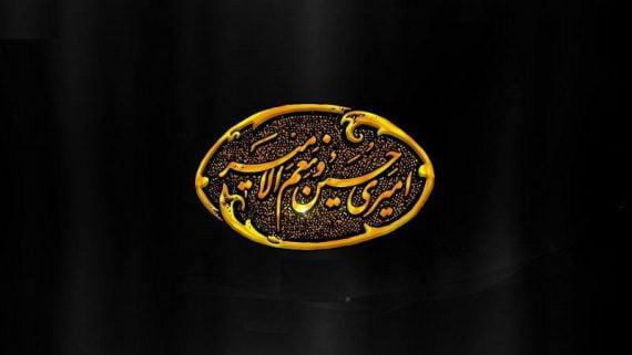 مداحی شب هشتم حمید علیمی