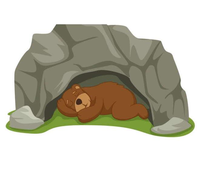 قصه کودکانه خرس تنبل