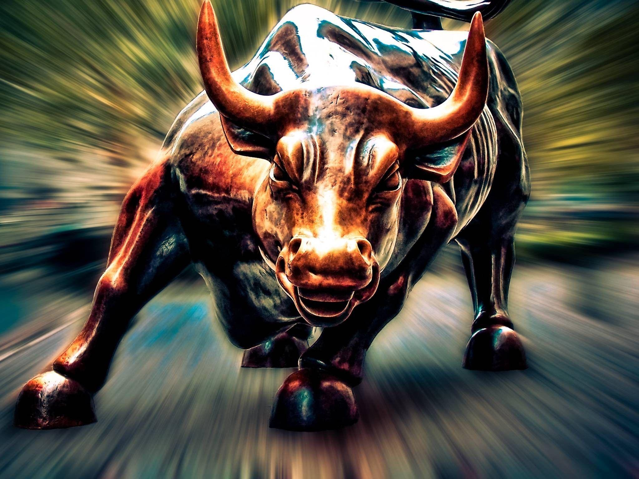 بازار گاوی و خرسی چیست