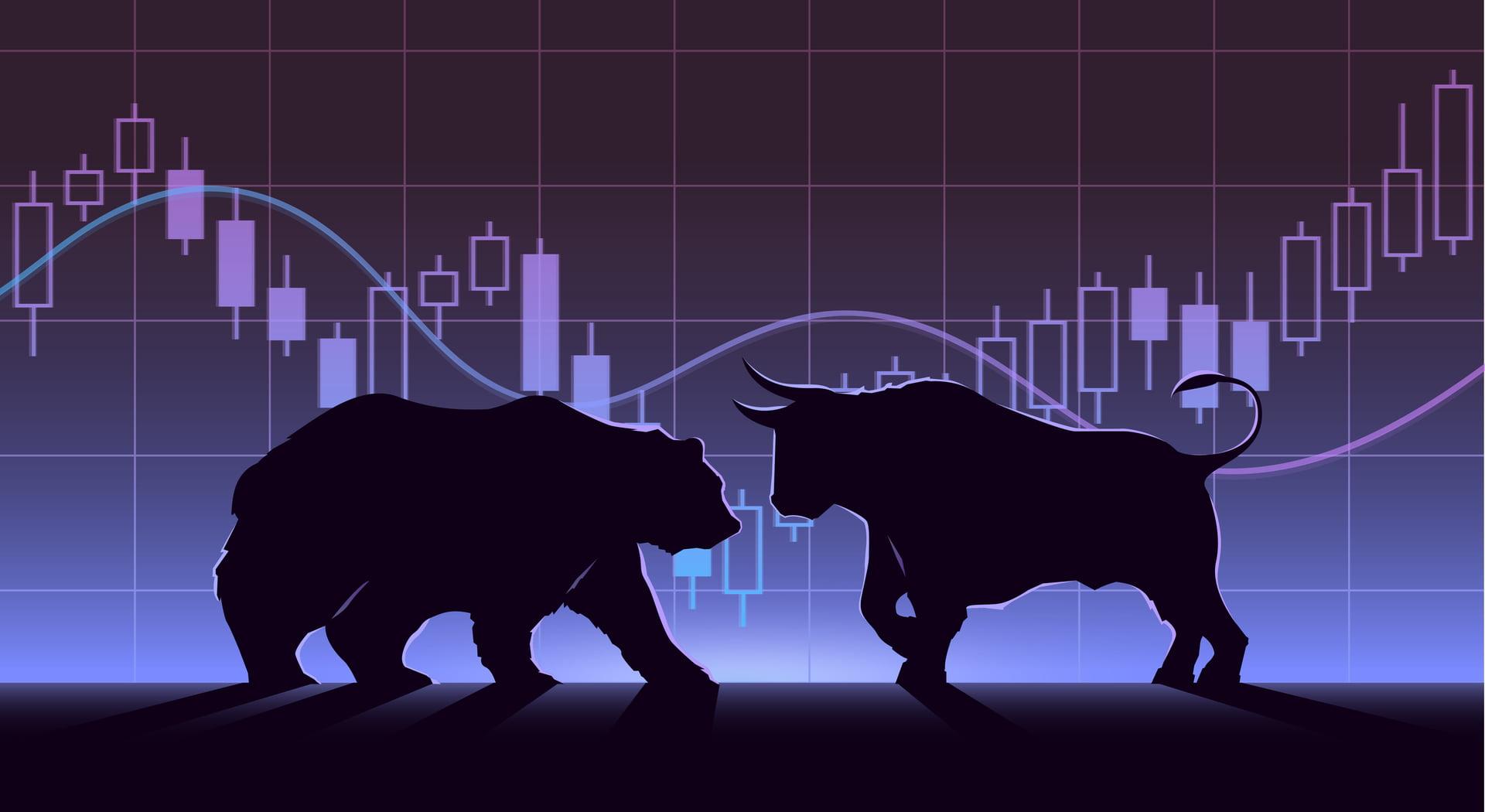 بازار گاوی و خرسی چیست و چه تفاوت هایی دارند؟