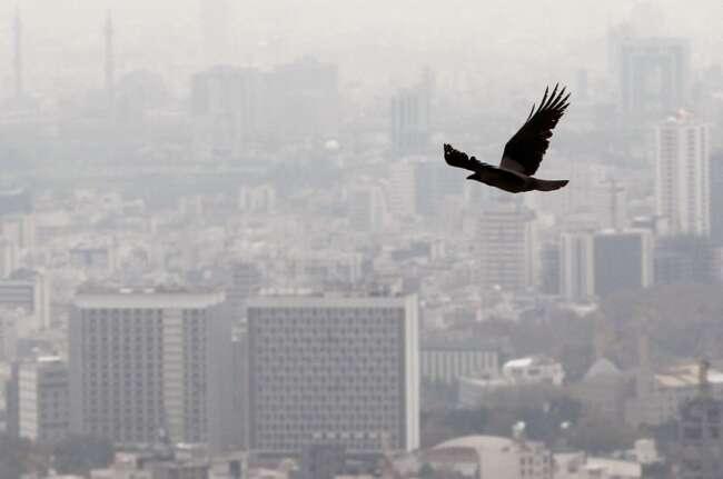 افزایش آلودگی در پایان فصل بهار و تابستان