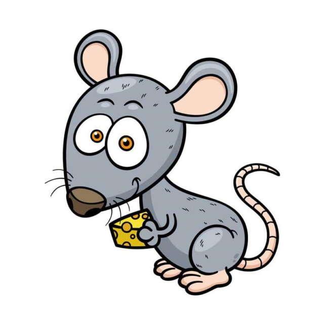 شعر کودکانه آقا موش شکمو ( آقا موشه ای شکموی دله)