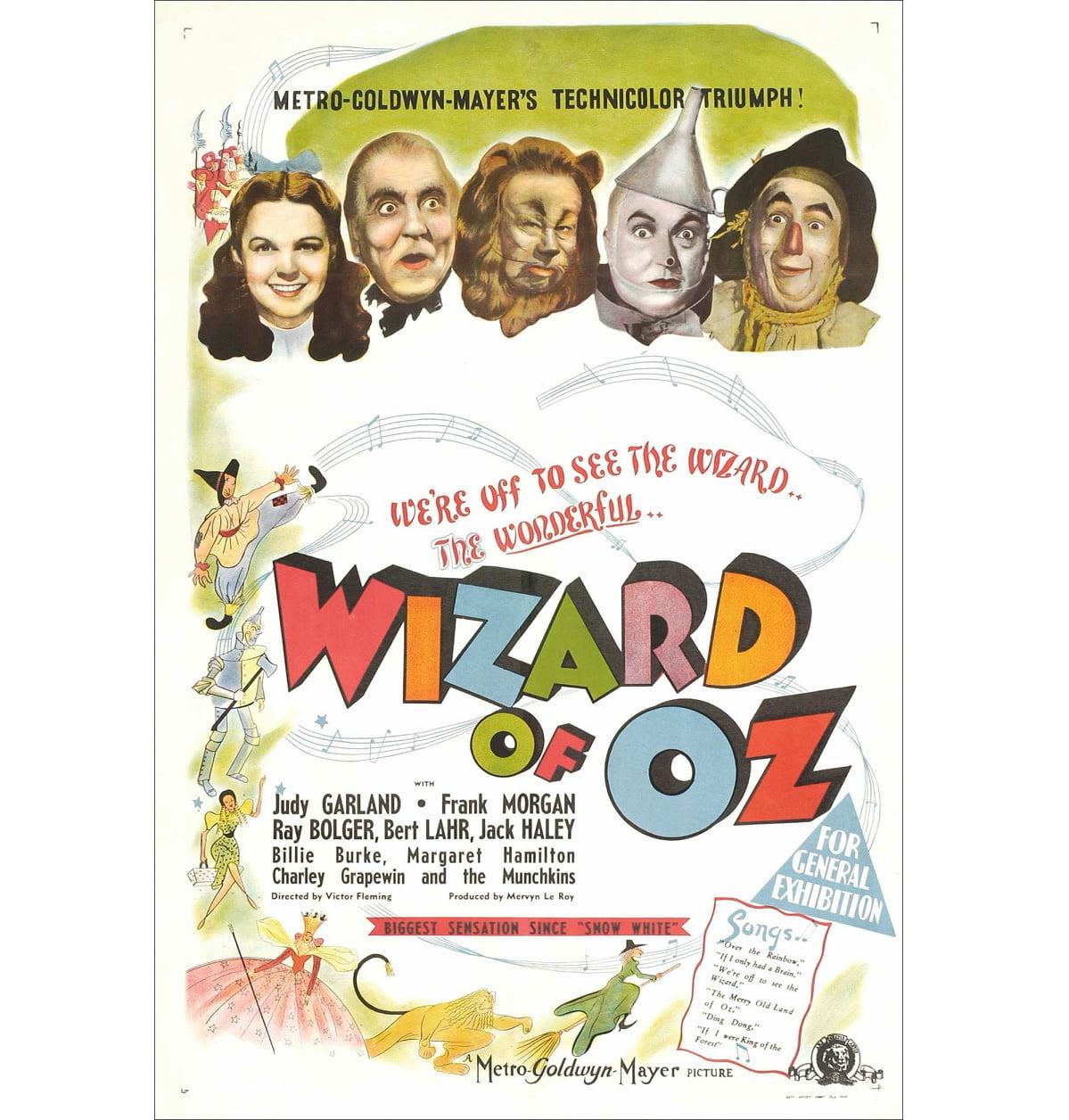 معرفی فیلم جادوگر شهر از ( The Wizard of Oz )