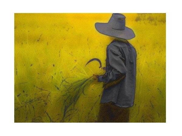 داستان کوتاه کشاورز بازنده