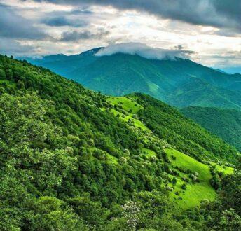 جنگل ارسباران کجاست