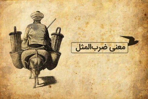 شاه می بخشه شیخ علیخان نمی بخشه