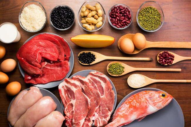 گروه غذایی گوشت و لبنیات