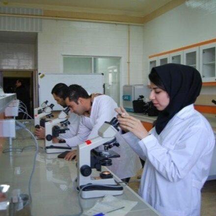 آغاز سال تحصیلی دانشجویان علوم پزشکی از ۲۰ شهریور