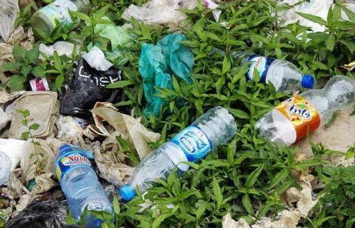 ایران جزو ۲۰ کشور اول دنیا در تولید زباله های پلاستیکی