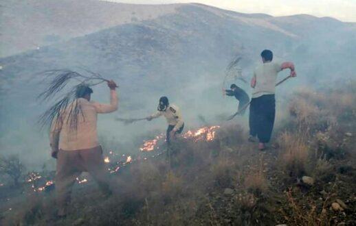 حریق ارتفاعات زاگرس در فارس ادامه دارد