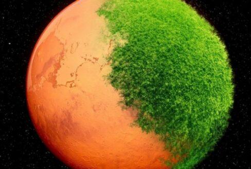حیات مریخی شباهتی با حیات زمینی ندارد