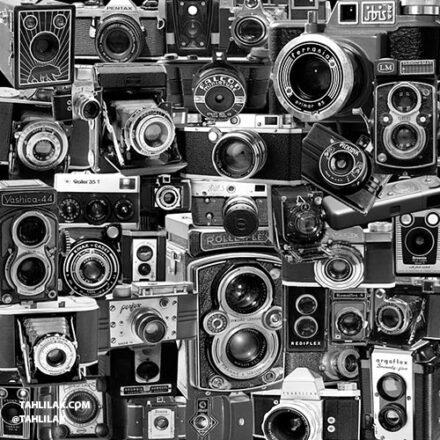 جهانی عکاسی مرداد