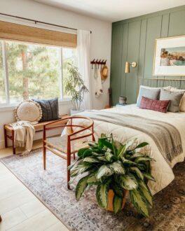 گیاه مناسب اتاق خواب