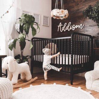 گیاه مناسب اتاق کودک
