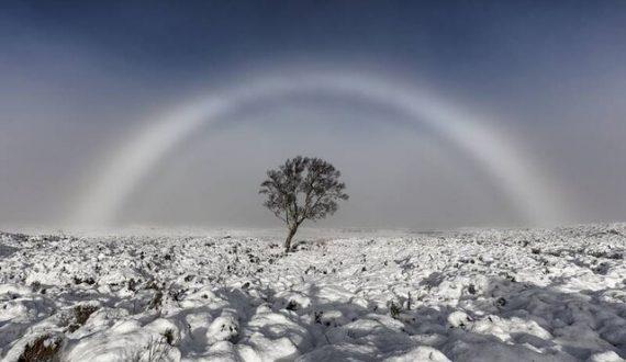 رونمایی از نامزدهای دریافت جایزه جهانی عکاسی آب و هوا