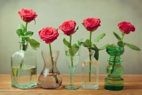 روش نگهداری دسته گل طبیعی