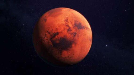 پرورش بذر و گیاه در مریخ