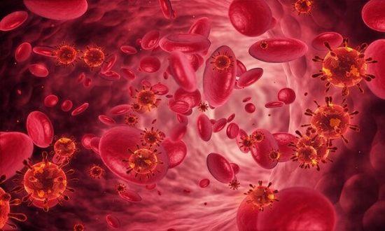 خون سازی در پاییز