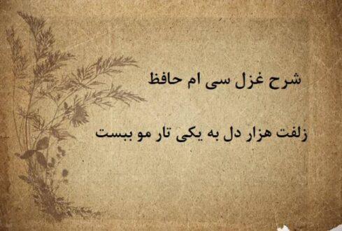 شرح غزل 30 حافظ / زلفت هزار دل به یکی تار مو ببست