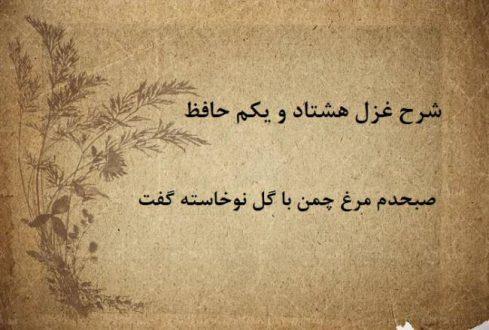 شرح غزل 81 حافظ / صبحدم مرغ چمن با گل نوخاسته گفت