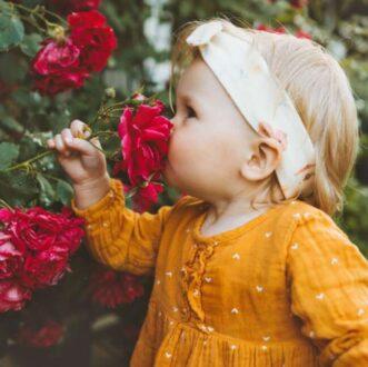 گل خوشبو