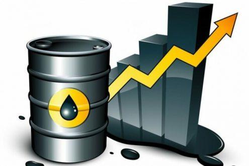 روند صعودی نفت از سر گرفته شد
