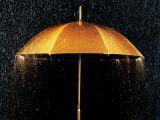 چتر و باران