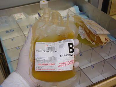 صادرات خون و پلاسما