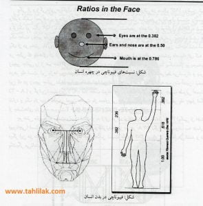 Picture1 295x300 - آموزش تحلیل تکنیکال : فیبوناچی و ابزارهای معاملاتی آن (قسمت اول)